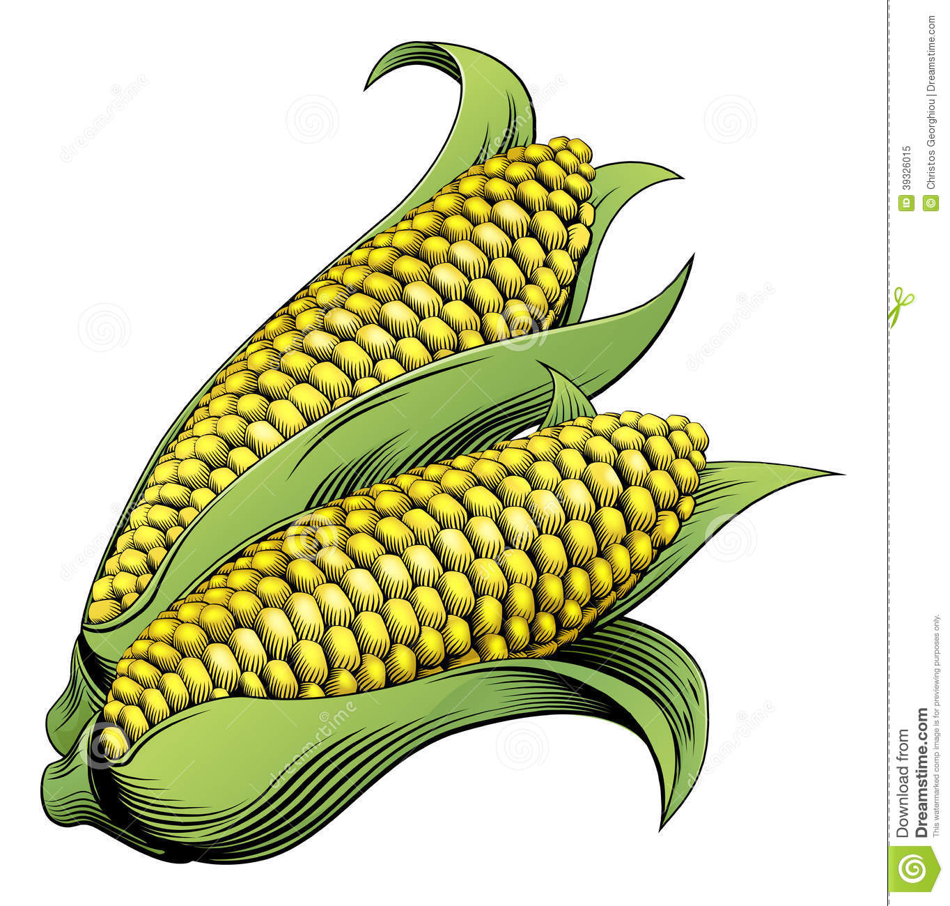 hight resolution of corn woodcut stock illustrations 105 corn woodcut stock illustrations vectors clipart dreamstime