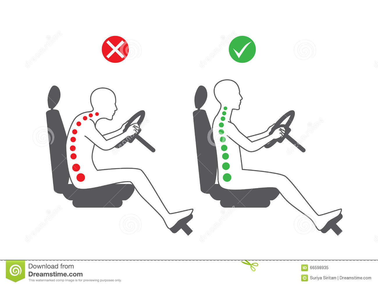 Correct Sitting Position In Driving Stock Vector