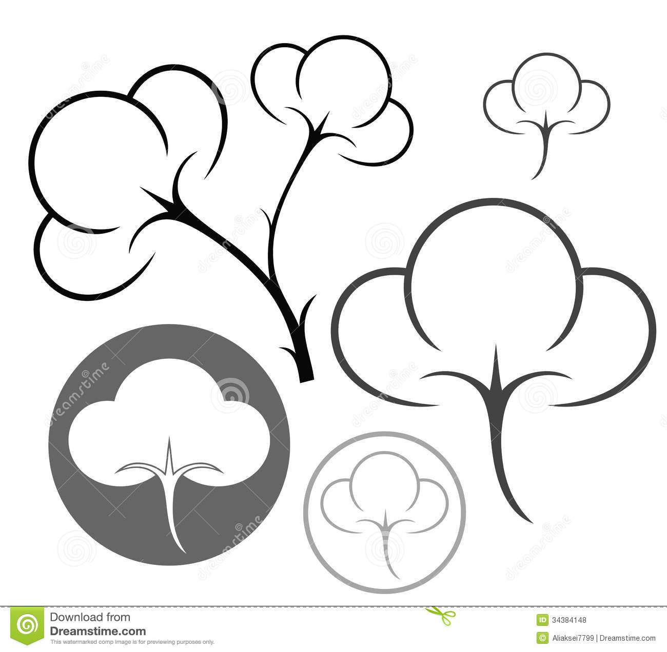 Cotton Stock Vector Illustration Of White Plant Vector