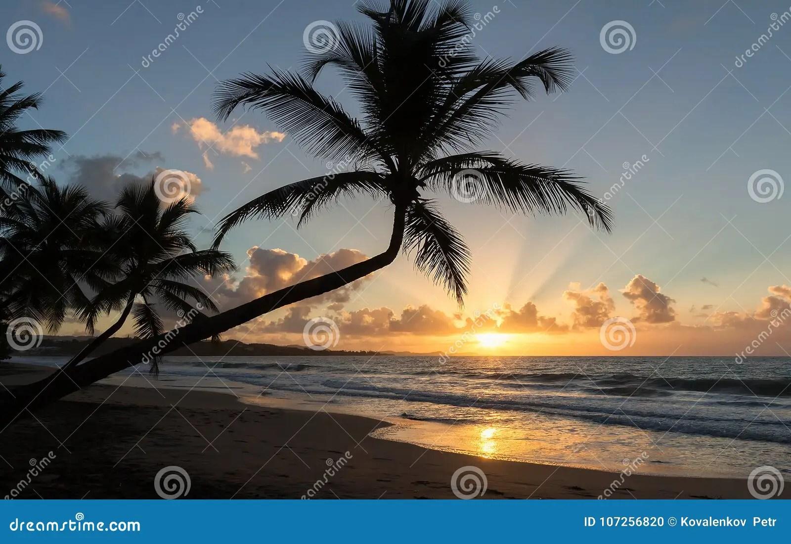 coucher du soleil plage de paradis et