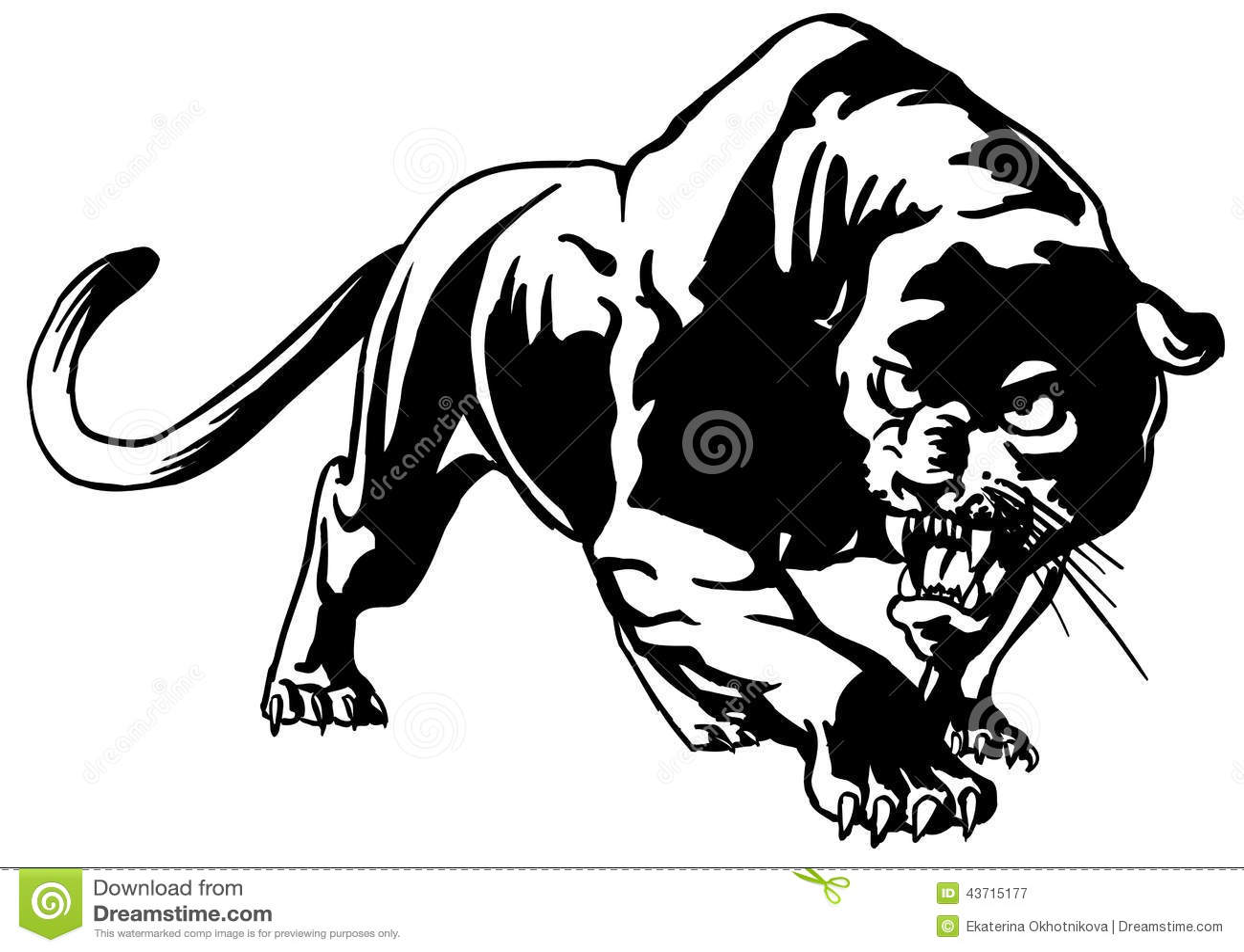 Cougar Stock Vector Illustration Of Symbol Mammal