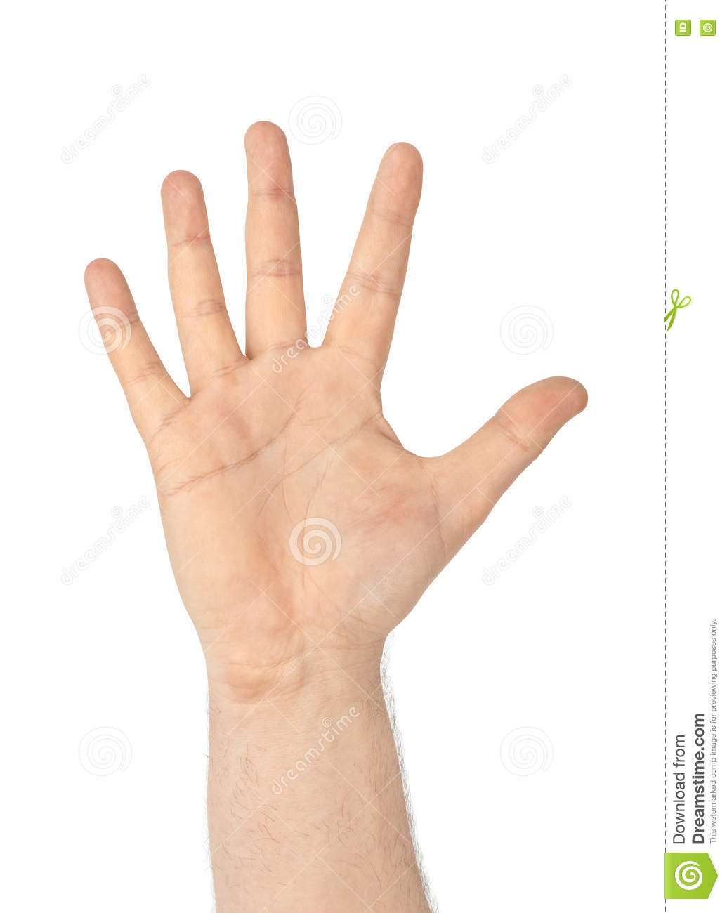Counting Hand