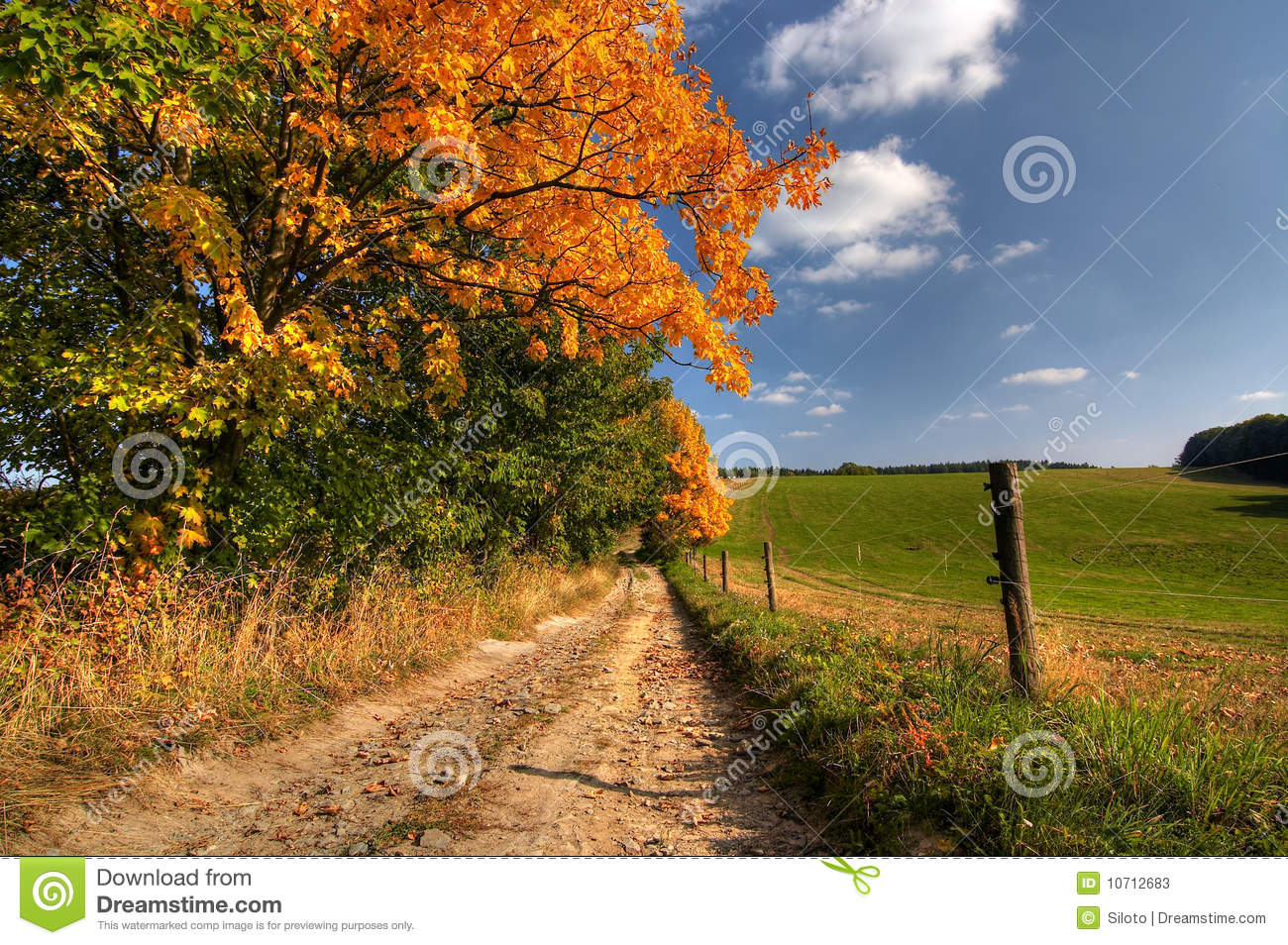 Fall Country Wallpaper Country Road And Autumn Trees Stock Photos Image 10712683