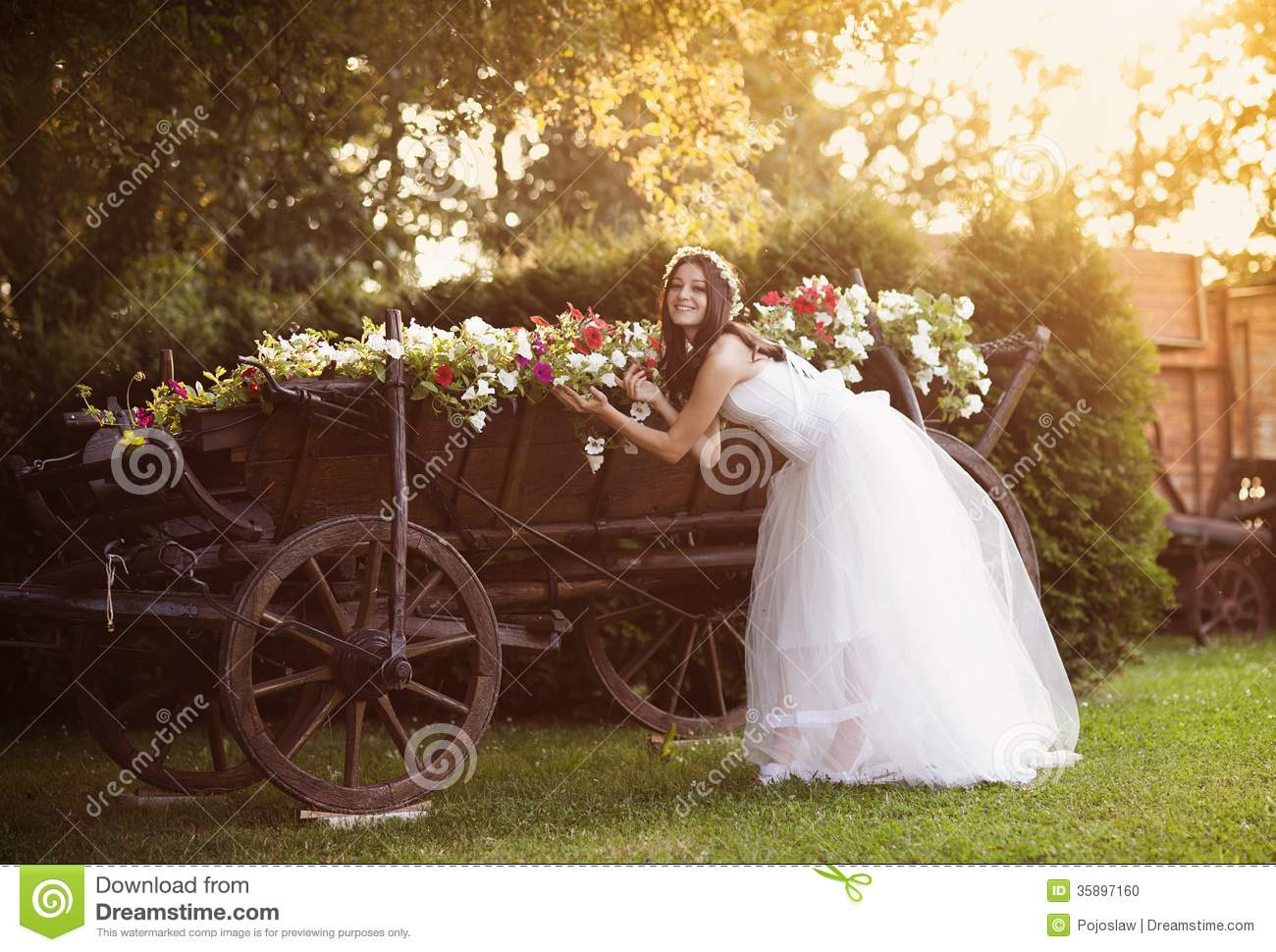 Countryside Bride Stock Photo Image 35897160