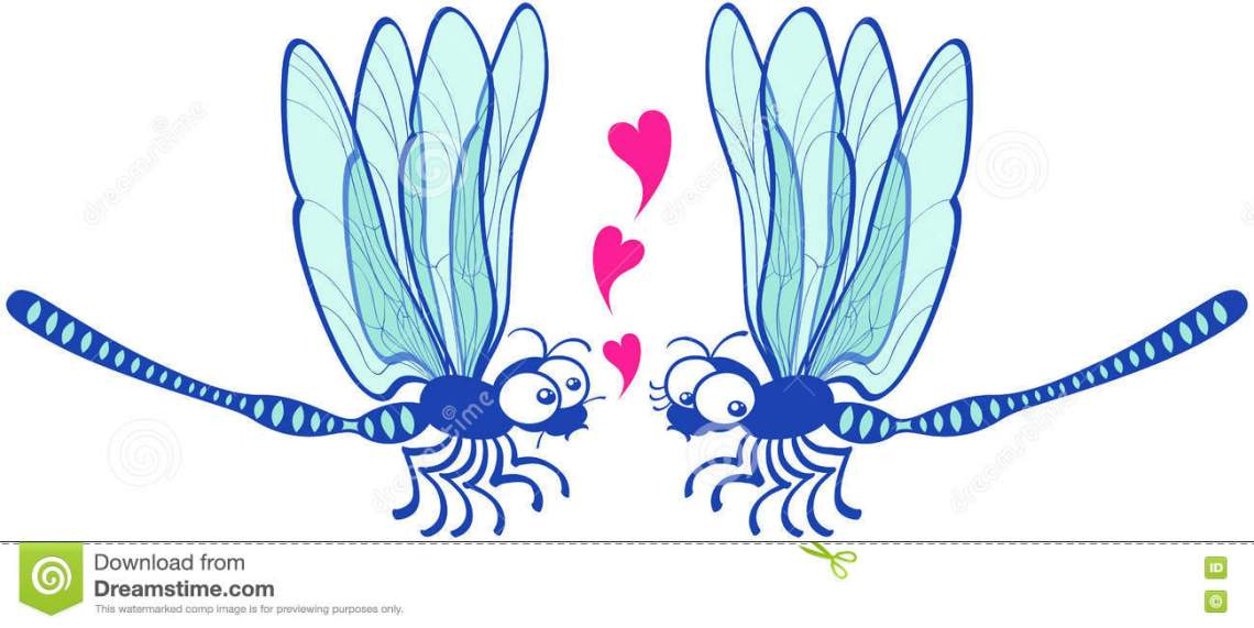 Download Couple Of Beautiful Blue Dragonflies Tenderly Falling In ...