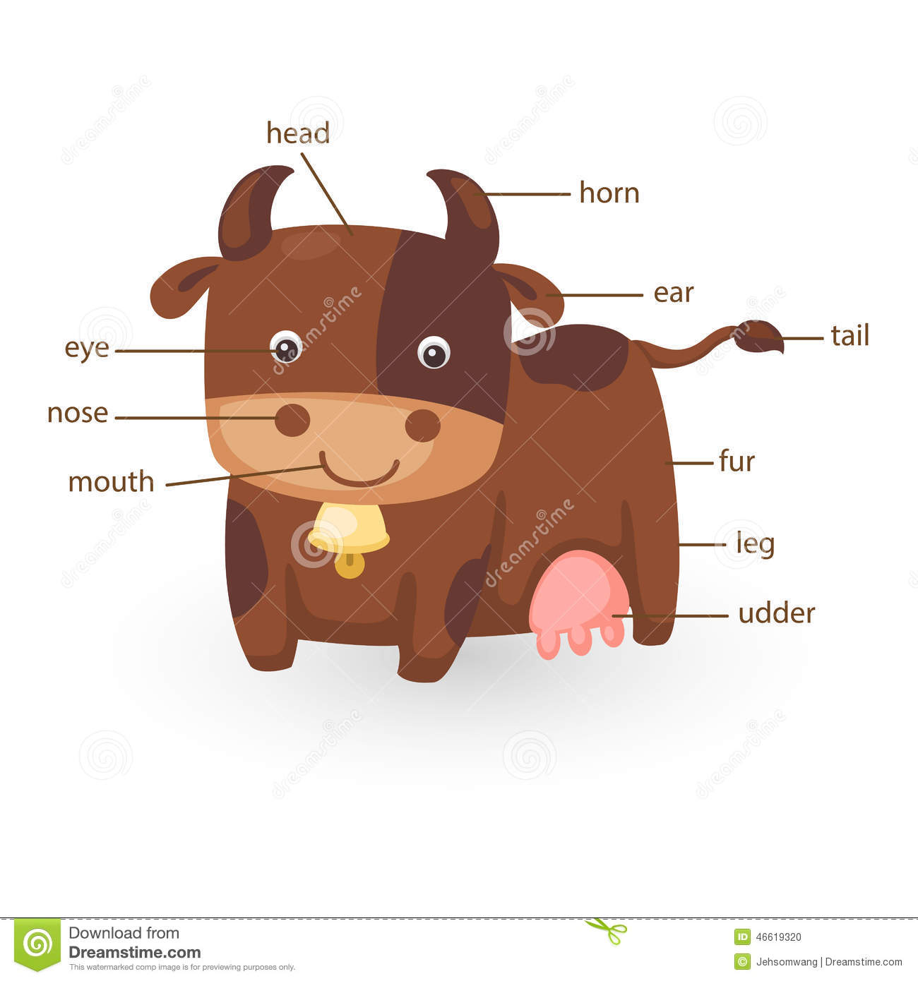 Cow Vocabulary Part Of Body Stock Vector
