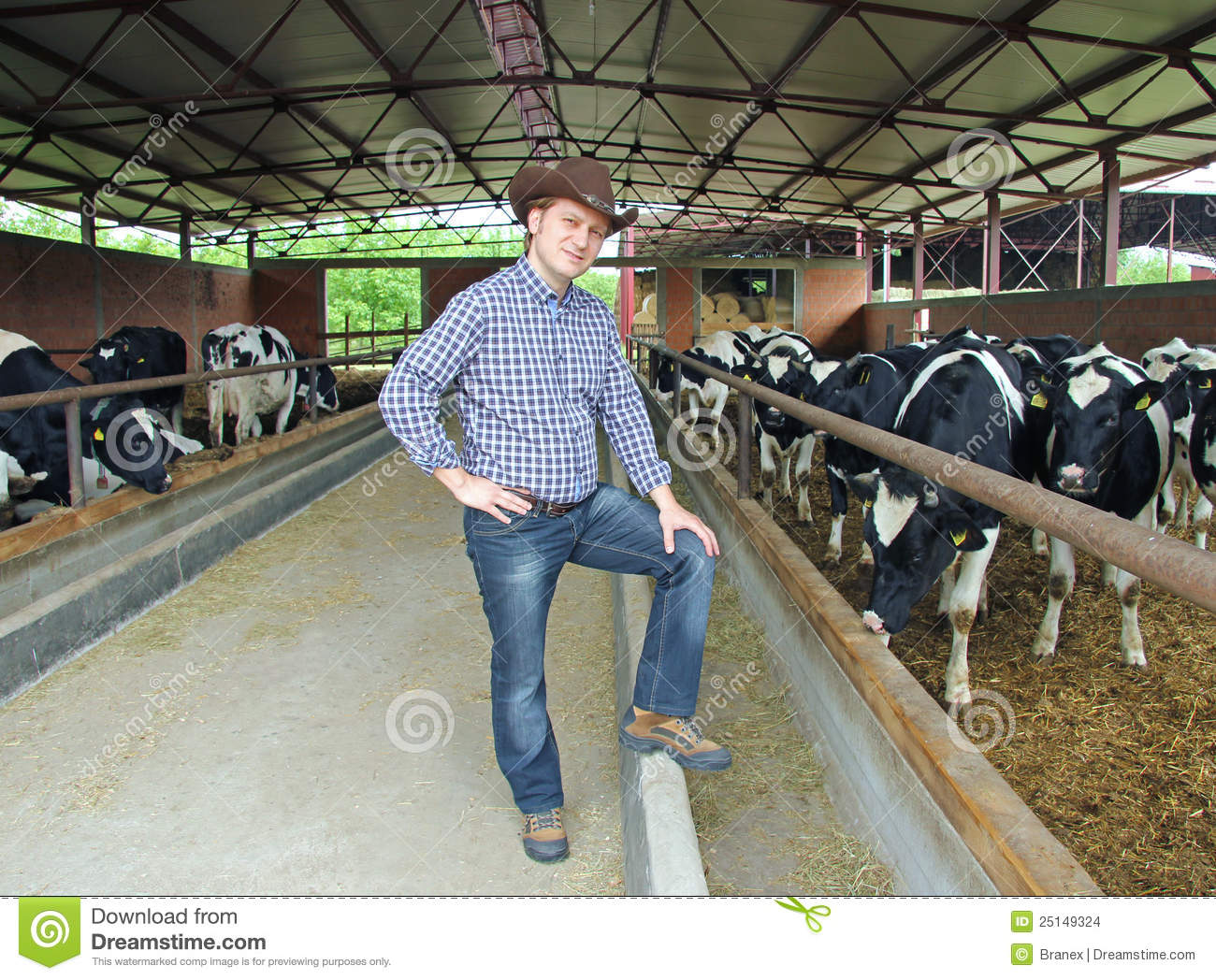 Cowboy On Farm Stock Images  Image 25149324
