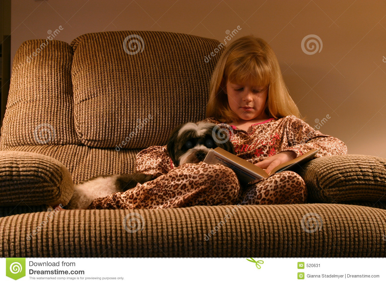 Cozy Bedtime Reading stock image Image of recliner story