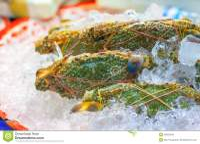 Crabs Stock Photo - Image: 25822940