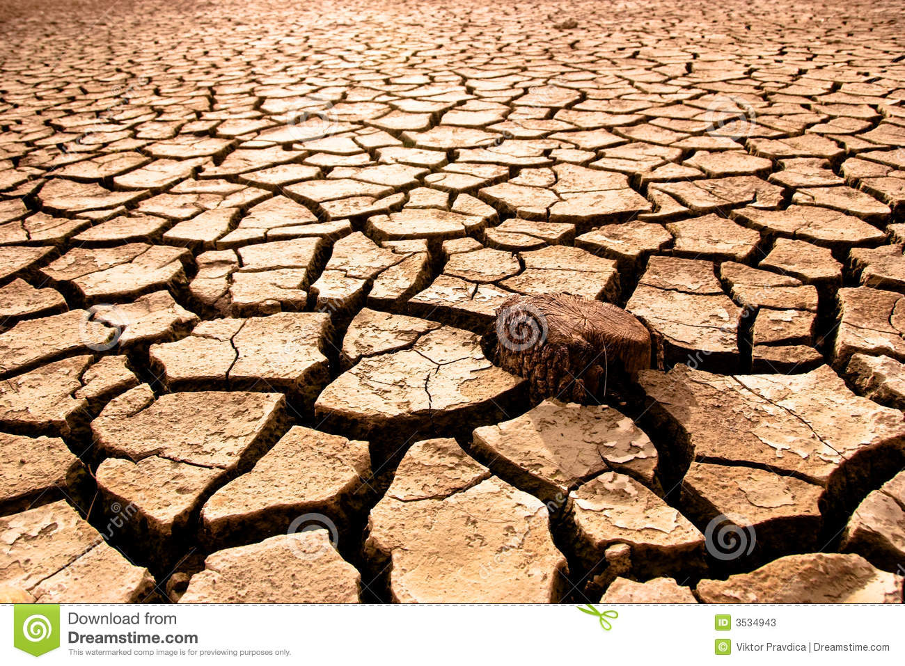 Cracked Earth Stock Photos - Image: 3534943