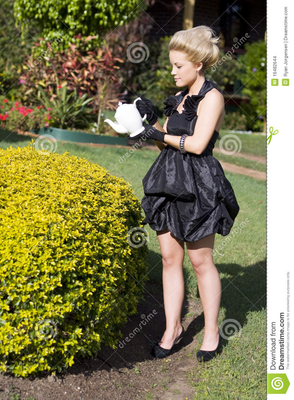 Crazy Rich Lady Stock Images  Image 16482644