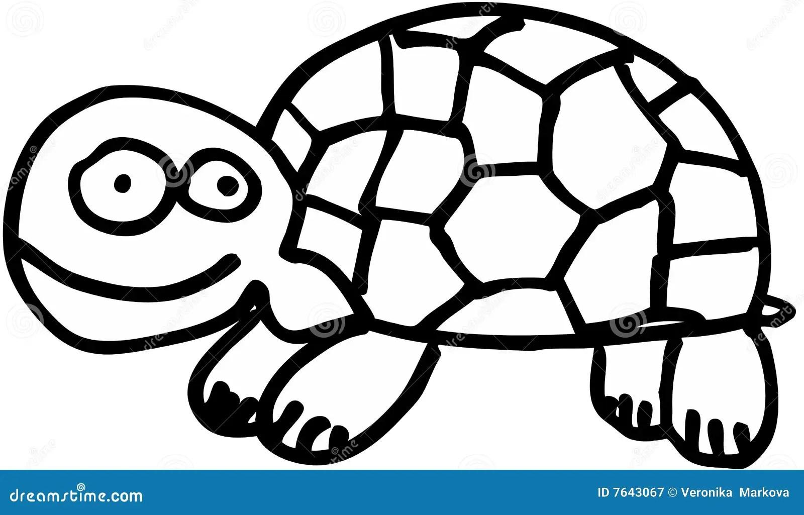 Crazy Tortoise Royalty Free Stock Photography