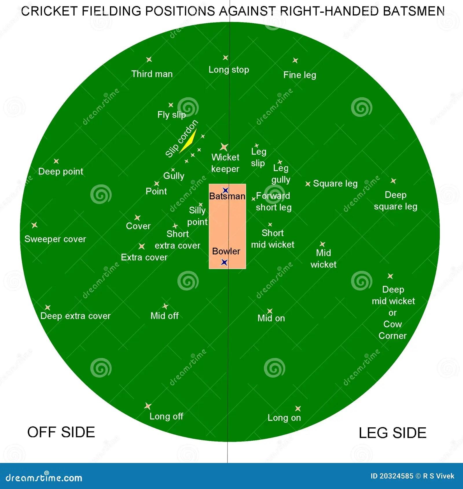 hight resolution of cricket fielding positions