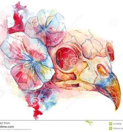 bright watercolor raven skull in flowers the conductor s death  [ 1300 x 1005 Pixel ]