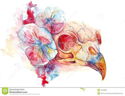 small resolution of bright watercolor raven skull in flowers the conductor s death
