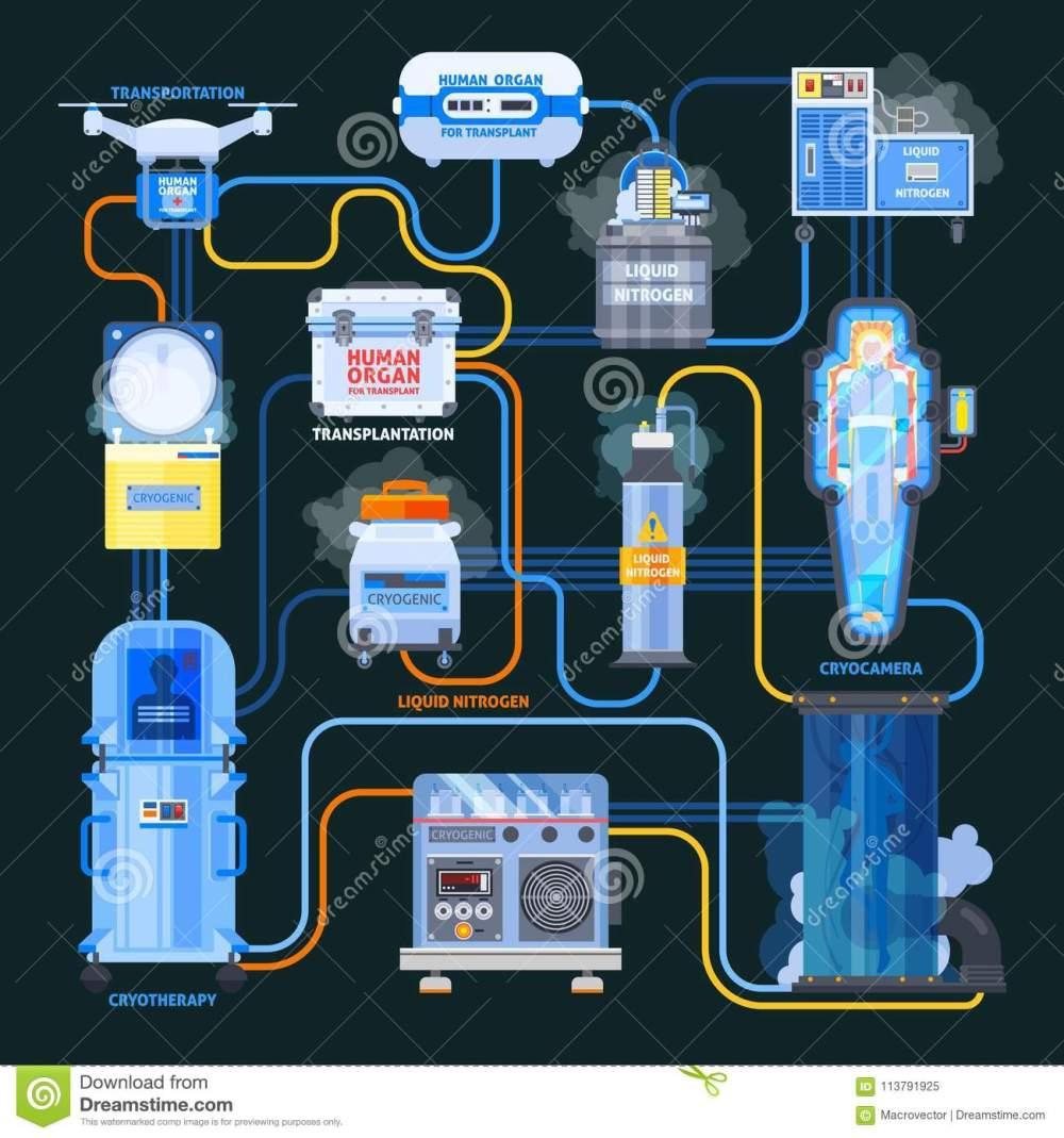 medium resolution of cryonics flat flowchart equipment with liquid nitrogen and human organs for transplantation on black background vector illustration