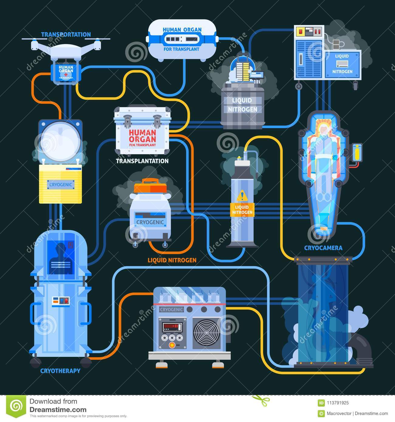 hight resolution of cryonics flat flowchart equipment with liquid nitrogen and human organs for transplantation on black background vector illustration
