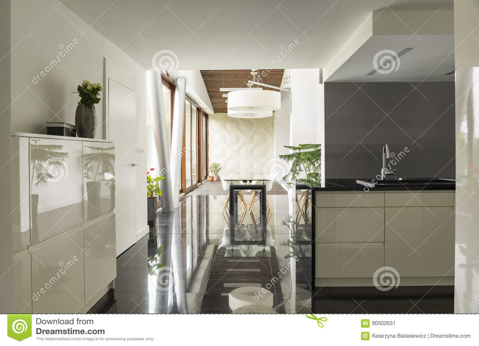 Cucina Con Sala Da Pranzo   Sala Da Pranzo E Cucina Moderne Immagine ...