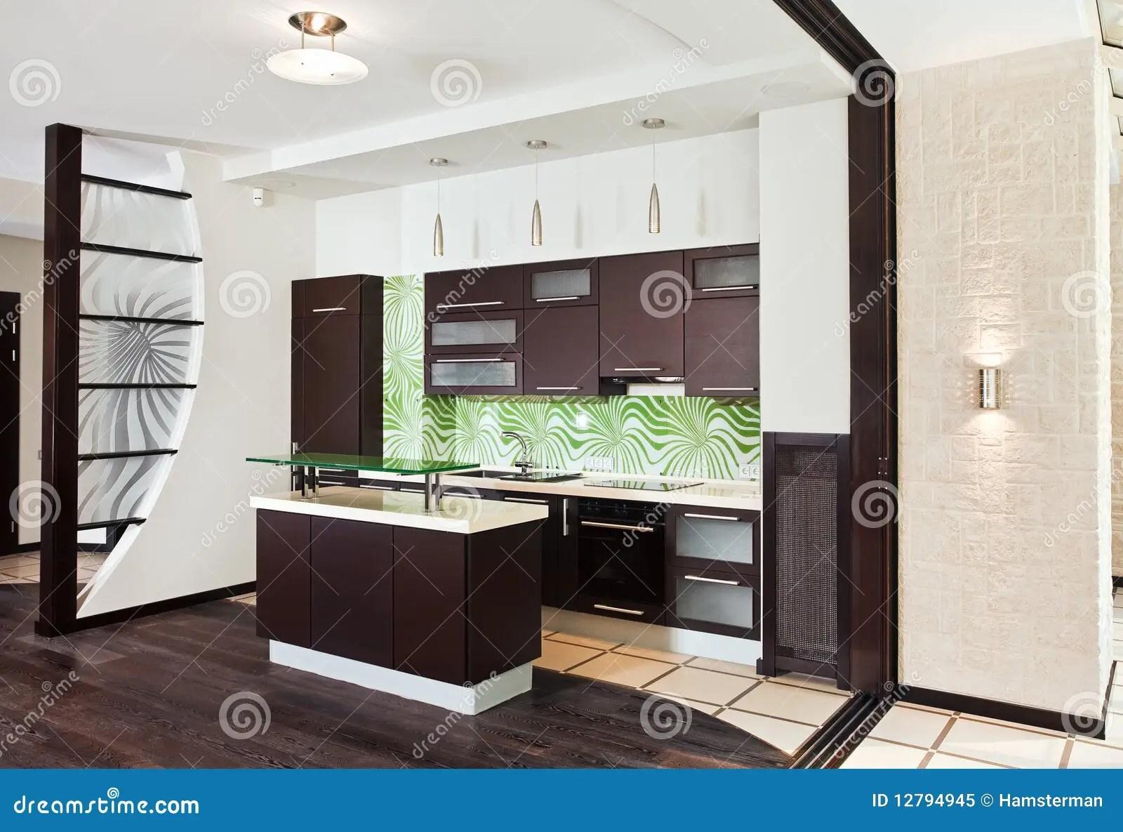 Cucina Moderna Con Il Pavimento Di Legno Scuro Immagine Stock  Immagine di apprettatrice