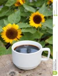 Cup Of Coffee On Sunflowers Background Stock Image - Image ...