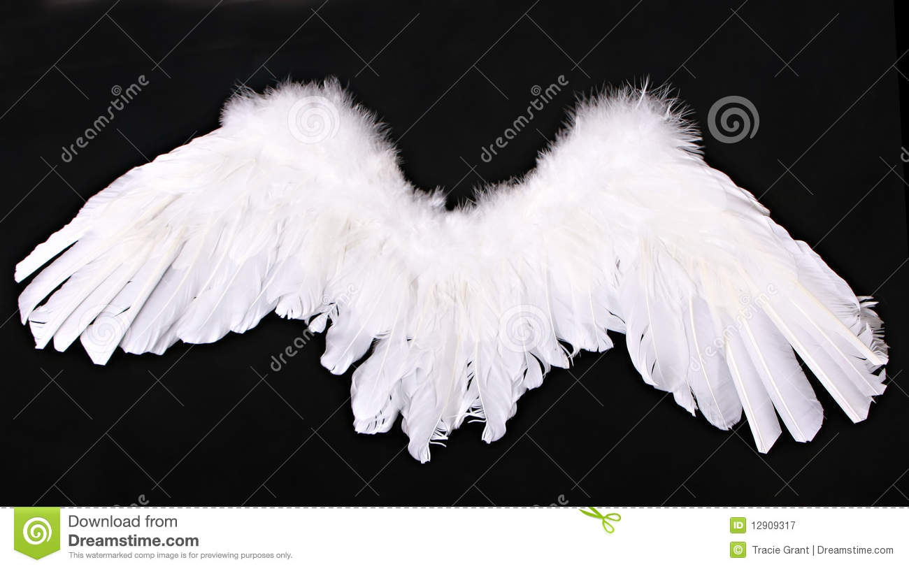 Cupid Angel Wings Photography Prop Royalty Free Stock