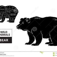 Black Bear Diagram 5 Types Of Joints Cut Set Poster Butcher Vintage Typographic Hand Drawn
