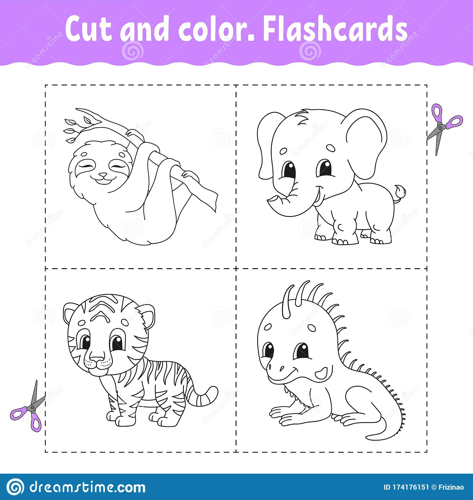 Cut And Color Flashcard Set Tiger Sloth Iguana
