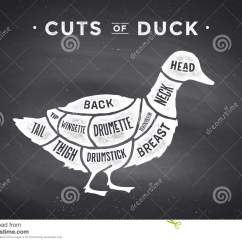 Duck Wing Diagram 4l60e Wiring Cut Of Meat Set Poster Butcher And Scheme