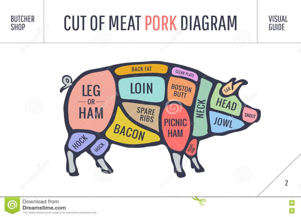 medium resolution of cut of meat set poster butcher diagram scheme and guide pork