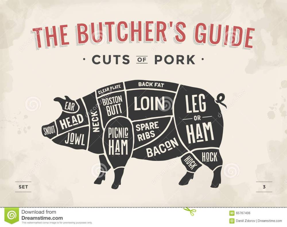 medium resolution of cut of meat set poster butcher diagram scheme and guide pork vintage typographic hand drawn vector illustration