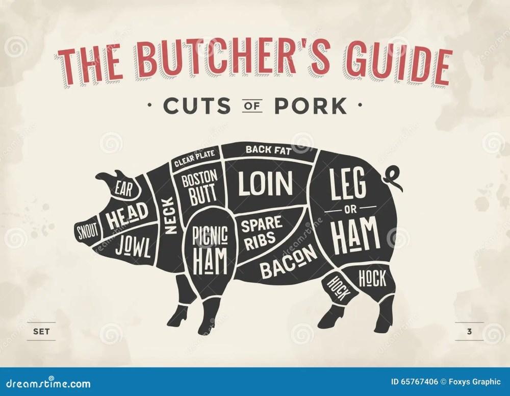 medium resolution of cut of meat set poster butcher diagram scheme and guide pork pork butchering diagram