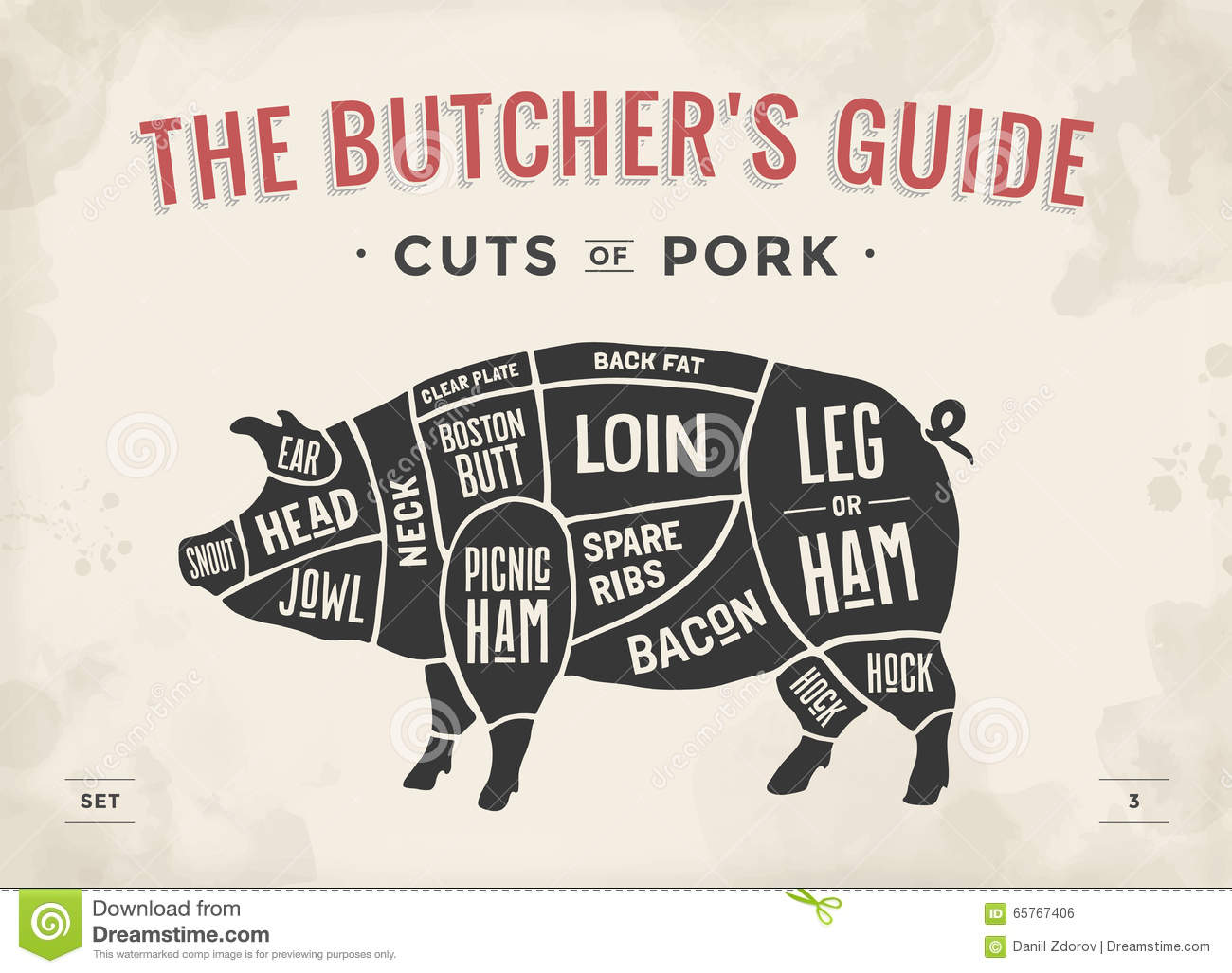 hight resolution of cut of meat set poster butcher diagram scheme and guide pork vintage typographic hand drawn vector illustration