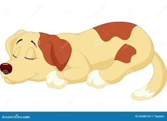 sleeping dog cartoon cute illustration royalty dreaming vector