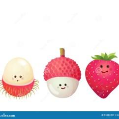 Strawberry Fruit Diagram 2007 Ford Fusion Ac Wiring Cute Fruits Lychee Litchi Rambutan Stock