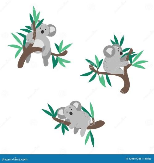 small resolution of cute koala bear climbing on eucalyptus tree vector clipart