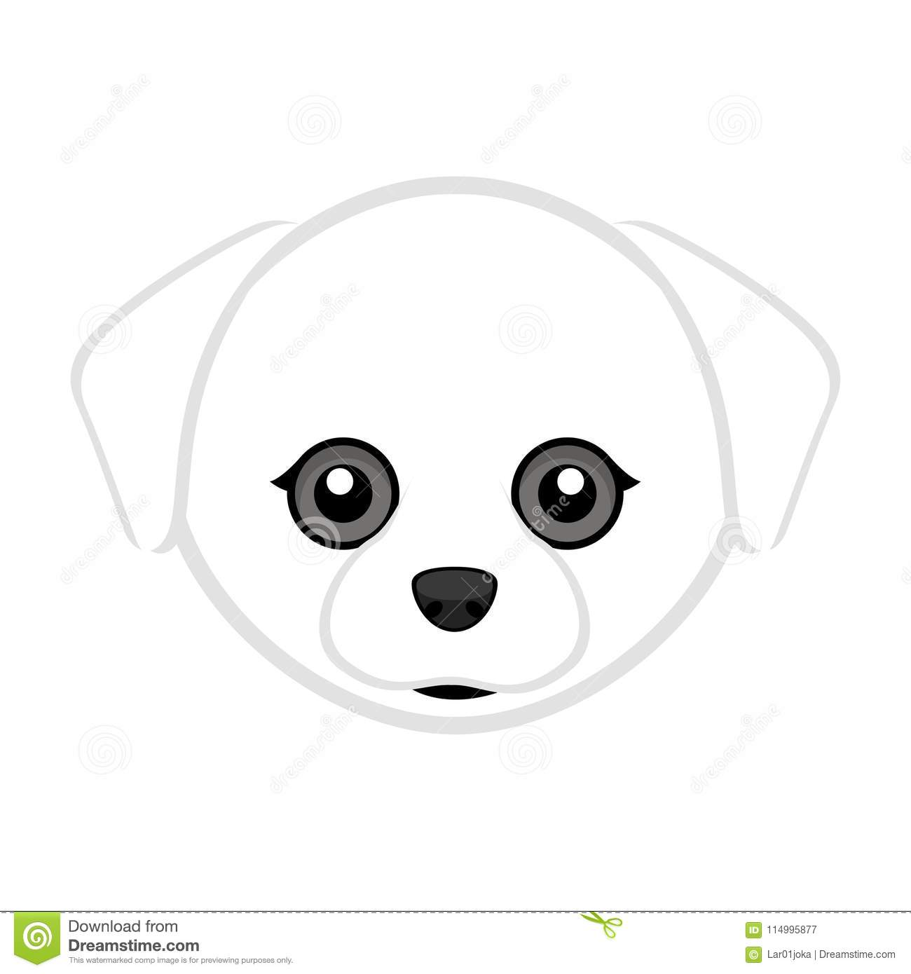hight resolution of cute maltese dog avatar