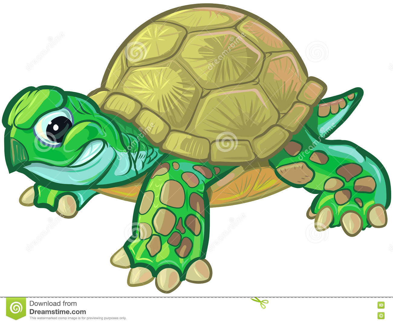 hight resolution of cute tough cartoon baby turtle or tortoise