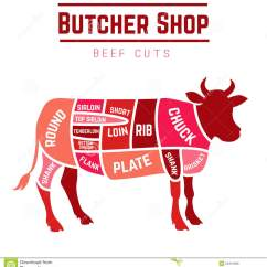 Beef Cuts Diagram Of Cow 2008 Cobalt Stereo Wiring Stock Vector Illustration Cattle