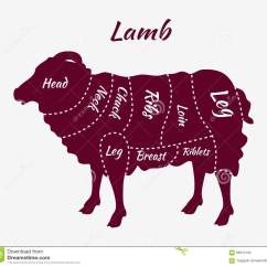 Vintage Lamb Butcher Diagram Simple Wiring For Trailer Lights Cuts Of Or Mutton Stock Vector Illustration