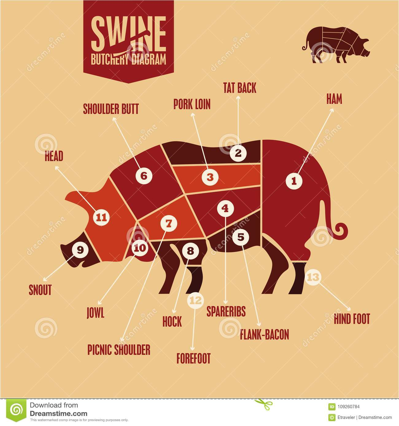 hight resolution of cuts of pork in color swine butchery diagram barbecue pork meatcuts of pork in color