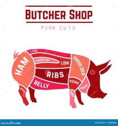 cuts pork stock illustrations 588 cuts pork stock illustrations vectors clipart dreamstime [ 1300 x 1390 Pixel ]