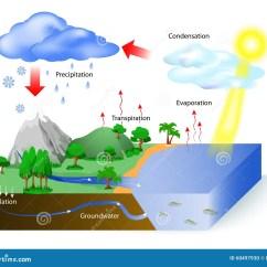 Labelled Diagram Of Water Cycle 89 240sx Fuel Pump Wiring De L'eau Illustration Vecteur. Du Flux - 60497930