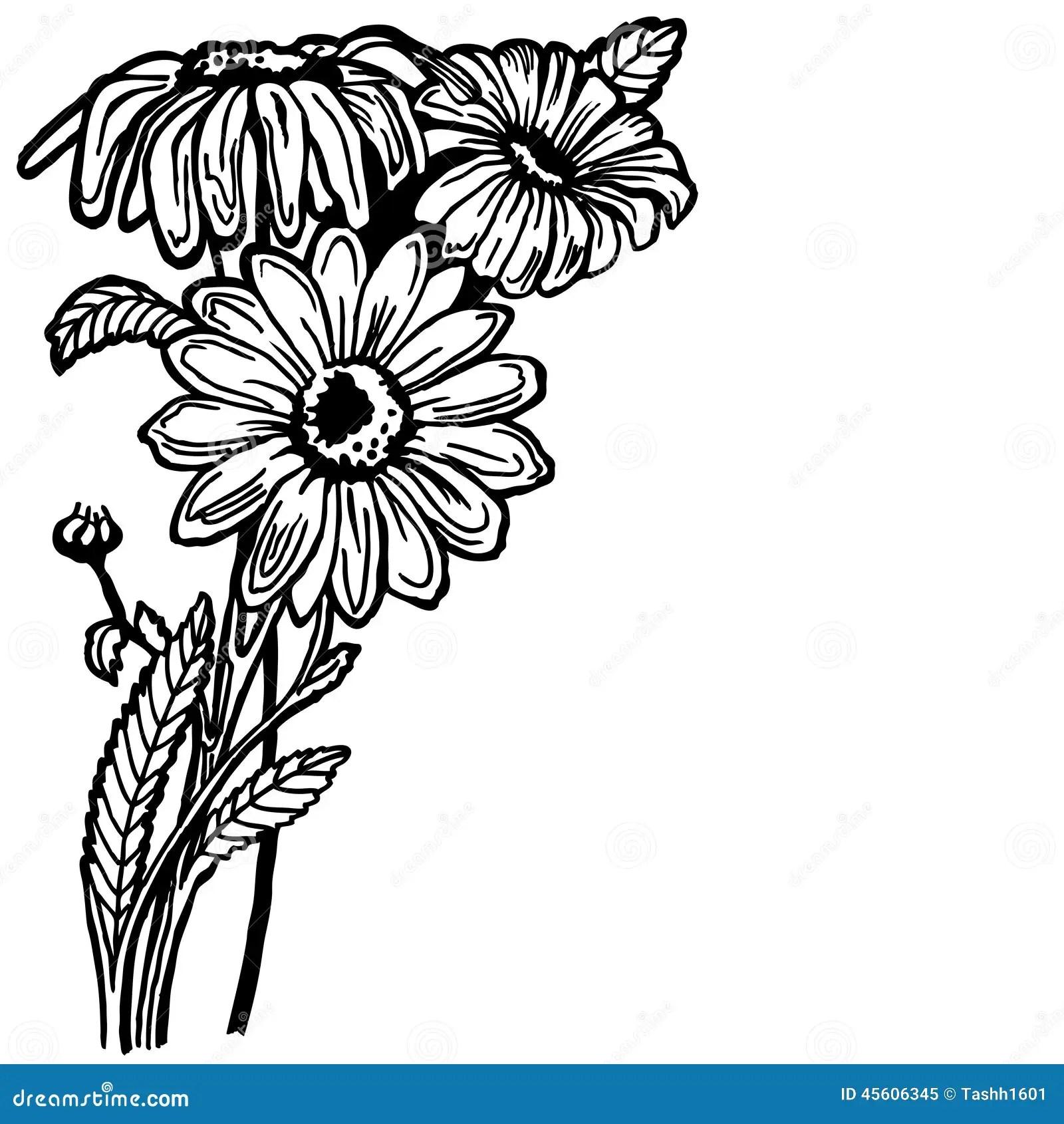 Daisy Bush Cartoon Vector