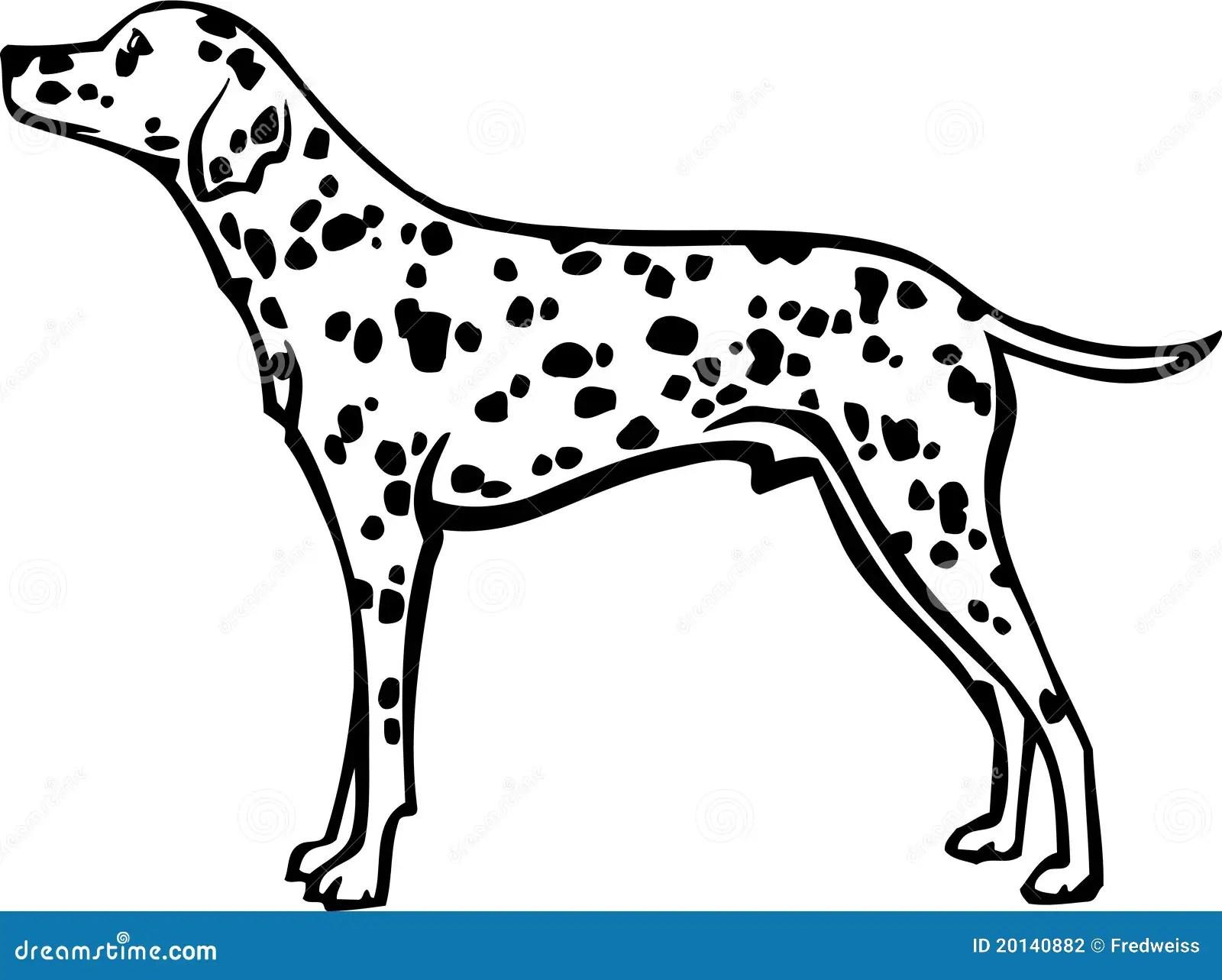 Dalmatian Illustration Stock Vector Illustration Of Line