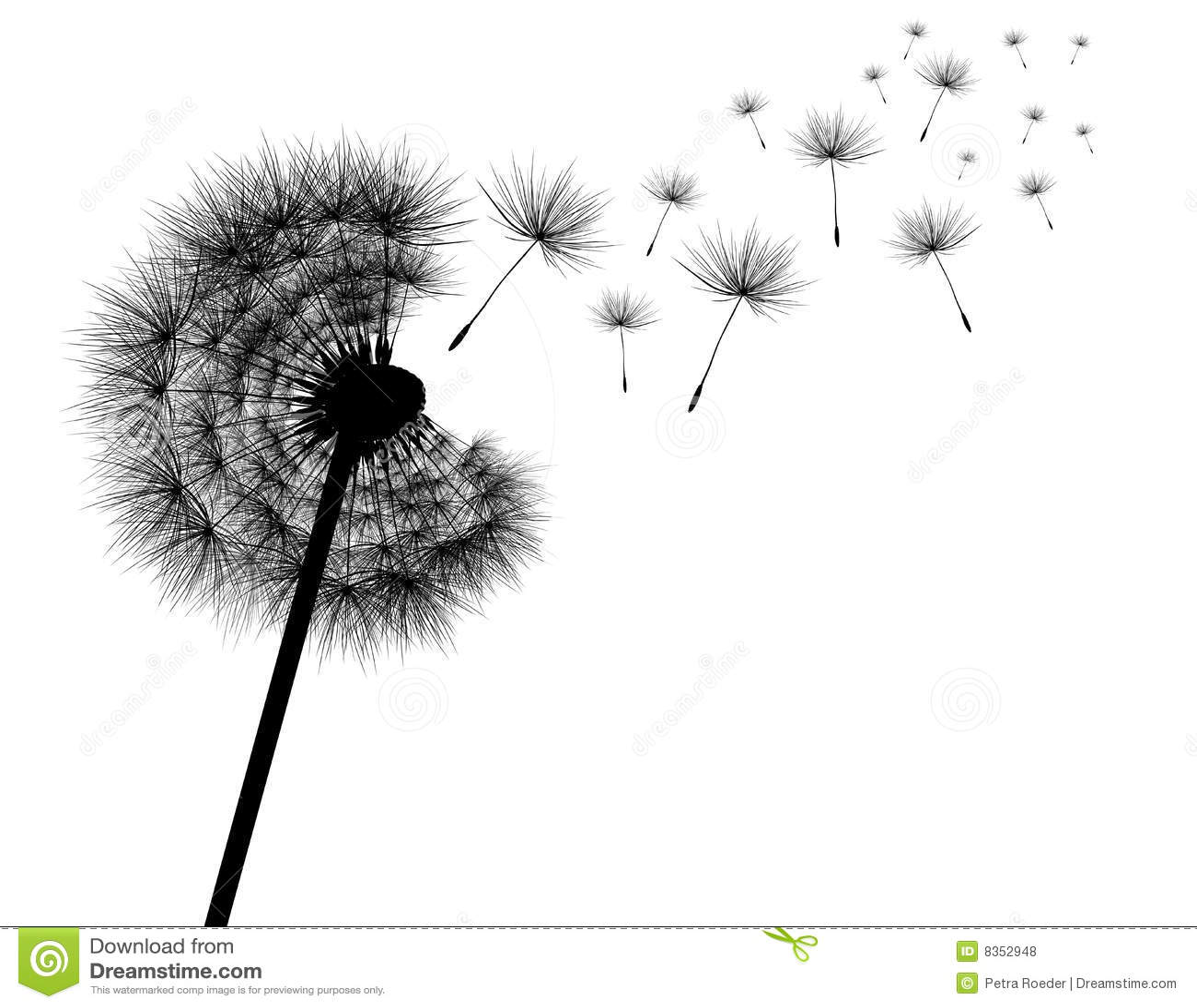 Dandelion Stock Vector Illustration Of Blow Illustration