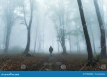 Dark Figure In Foggy Forest Stock - 77904388
