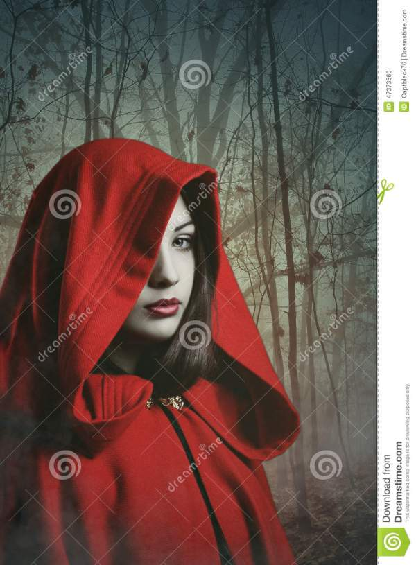 Dark Red Hooded Woman In Misty Forest Stock