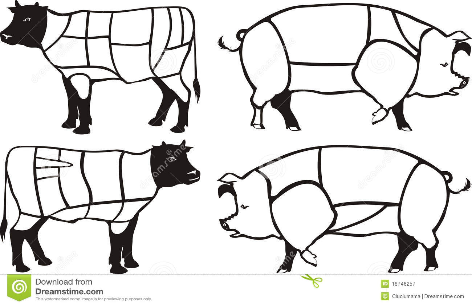 De Diagrammen Van Het Varkensvlees Amp Van Het Rundvlees