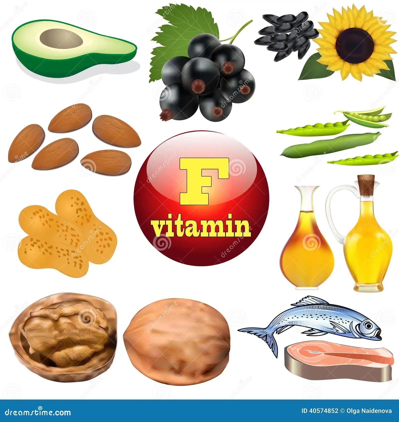 De Plant Van De Vitaminef Inhoud Enrlijke Producten