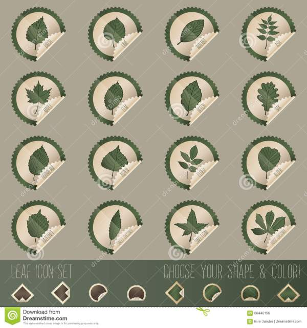 Deciduous Tree Leaf Icon Set In Stamp Shape Stock Vector